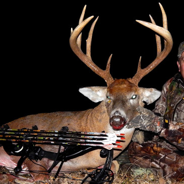 6 Amazing Bowhunting Facts You Need to Know