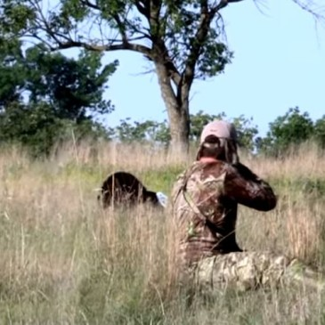 "How to Get ""SLOBBERKNOCKER"" Close to Turkeys This Spring!"
