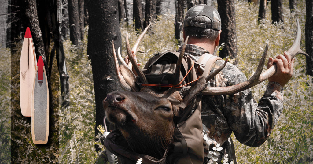 The Ultimate in Accuracy and Knockdown Power – Hunt Daily