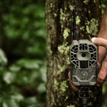 Wireless Technology: Is It the Missing Link in Your Whitetail Strategy?